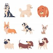Cartoon Dogs. Retriever Labrador Husky Puppies, Flat Happy Pets Set, Isolated Home Animals On White  poster