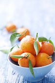 bowl of mandarins, they can also paa as oranges