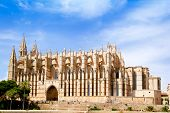 Cathedral of Majorca  La seu from Palma de Mallorca in Balearic Island Spain