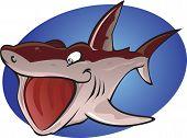 Cartoon Basking Shark