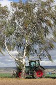 Tractor And Birch Tree In A Storm