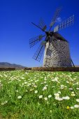 Windmill Blue