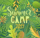 Summer Camp 2019 Lettering On Jungle Background With Tropical Leaves. Interesting Adventure In Jungl poster
