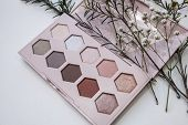 Palette Of Nude Cosmetic Make Up, Eye Shadow Palette, Natural Colors Shadows Minimalism, Close Up poster