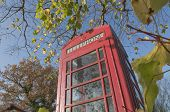 English Countryside Phone Booth