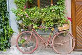 Bergheim (alsace) - Bicycle And Flowers