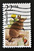 UNITED STATES OF AMERICA - CIRCA 1987: A stamp printed in USA shows an Armadillo circa 1987