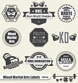 Mixed Martial Arts Labels and Icons