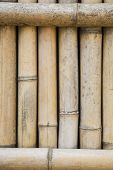 Bamboo Fence in Koraku-en Park