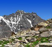 Mount Dom  - Swiss alps