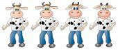Cow 4- Composite