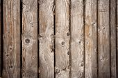 Wooden Path Texture