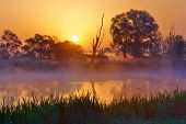 stock photo of nightfall  - Beautiful foggy sunrise over the Narew river - JPG