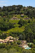 Green Hills In Saint-paul-de-vence , Provence, South France.