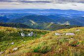Craggy Stones On Mountain Green Bumps