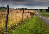 Fenceline And Road