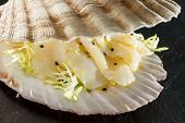 scallops served in a shell