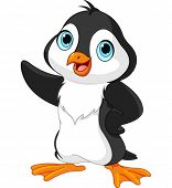 Cartoon illustration of showing  penguin on white background