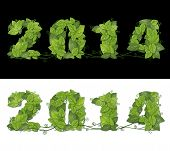 New Year 2014. Date Lined Green Leaves With Drops Of Dew.
