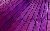Purple Parachute Tent
