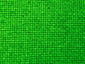 Vibrant Green Woven Fabric