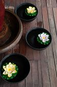 Spa Still Life With Lotus Flower And Wood