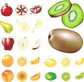 Ilustraciones de fruta