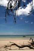 Shark Spit, Moreton Island