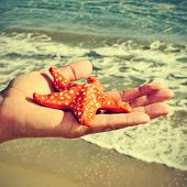 picture of someone holding a papier-mache starfish with the ocean in the background, with a retro ef