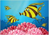 foto of school fish  - Illustration of a group of stripe - JPG