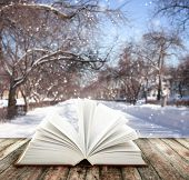 Book of nature on winter background