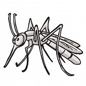 cartoon illustration of grey mosquito