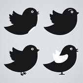 Set Of Birds Icons