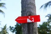 Tsunami Warning Sign On The Palm In Indonesia