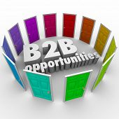 B2B Opportunities words in 3d letters surrounded by colored doors as job or career paths for success
