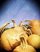 Instagram filtered image of a pile of pumpkins