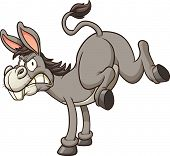 picture of angry  - Angry donkey kick - JPG