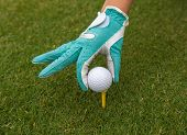 stock photo of ladies golf  - gloved hand putting a golf ball on a tee - JPG