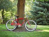 a vintage bicycle propped up against a tree in a park