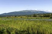 Look to Vitosha mountain from Plana