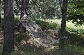 Hammock in the mountain forest
