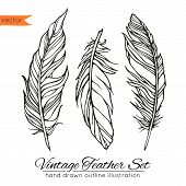 Vintage feather set isolated on white