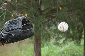 Catching Baseball