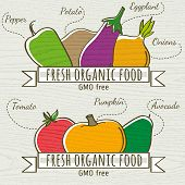 Set Of Organic Vegetable And Fruit, Vector Illustration