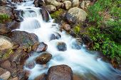 Mountain Stream Closeup