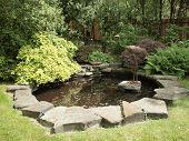 Garden Pond With Bird Crane Bronze Statue