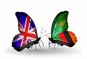Two Butterflies With Flags On Wings As Symbol Of Relations Uk And Zambia