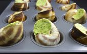 Ready To Bake Escargot
