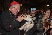 Cardinal Dolan blessing Maltese