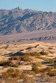 Sand Dunes Death Valley Desert Mesquite Flat Grapevine Mountains